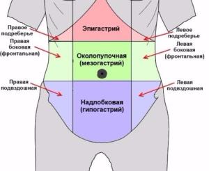 эпигастрия